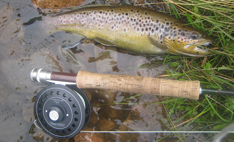 Fly fishing for trout on streams tips and techniques for for Fly fishing rods for beginners