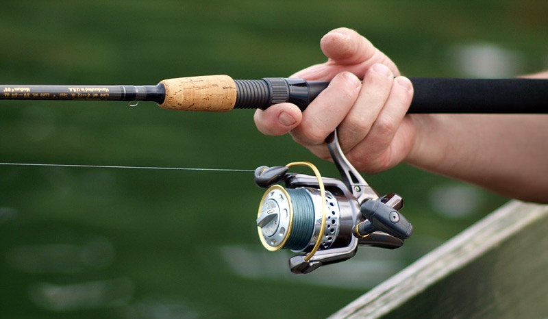 best spinning reel reviews 2018 a guide for saltwater