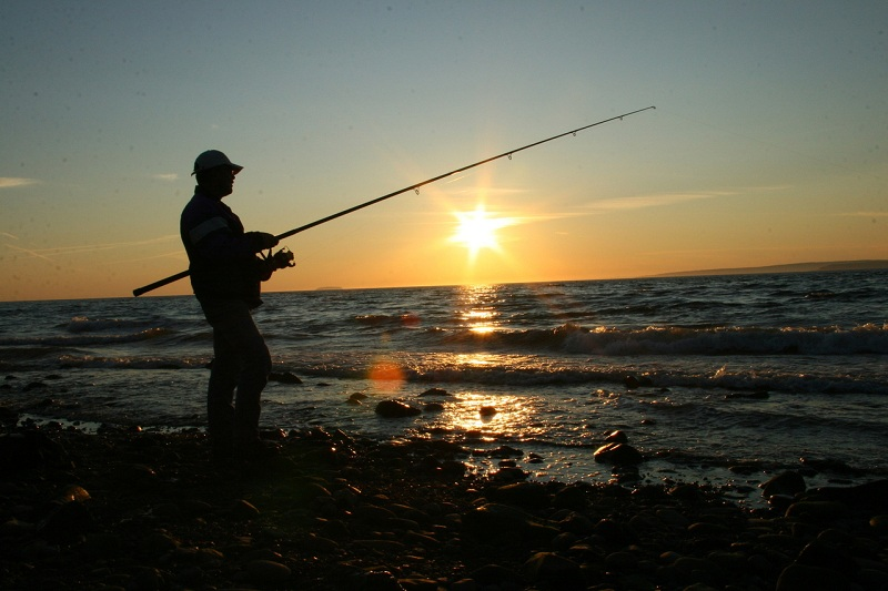 Most Useful Night Fishing Tips and Techniques