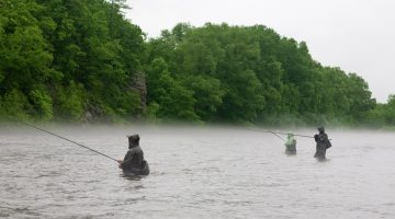 Fly Fishing in the Rain – Tips for an Awesome Day!