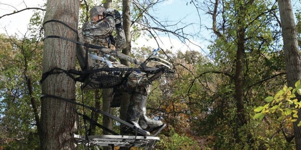 Best Climbing Tree Stand 6 best climbing tree stand reviews 2019 which is for bowhunting?