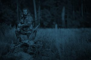 Coyote Hunting at Night Tips