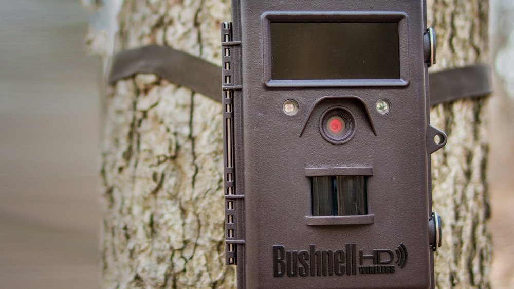 Best Trail Cameras 2019 4 Best Wireless and Cellular Trail Camera Reviews 2019   Buyer's Guide