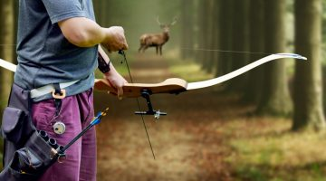 Where To Shoot A Deer With A Bow – Deer Hunting Experience
