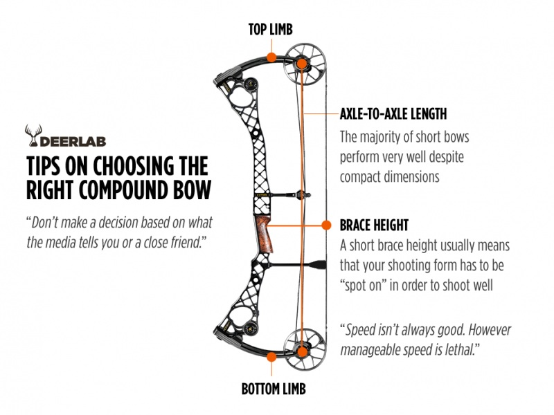Choosing the Best Compound Bow