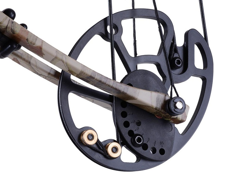 Compound Bow Speed