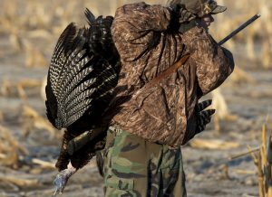 Turkey Hunting Tactics