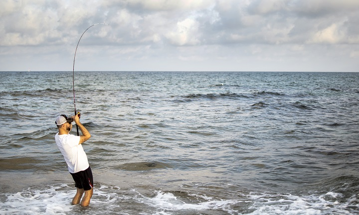 9 Best Surf Fishing Rods 2020 Buyer S Guide