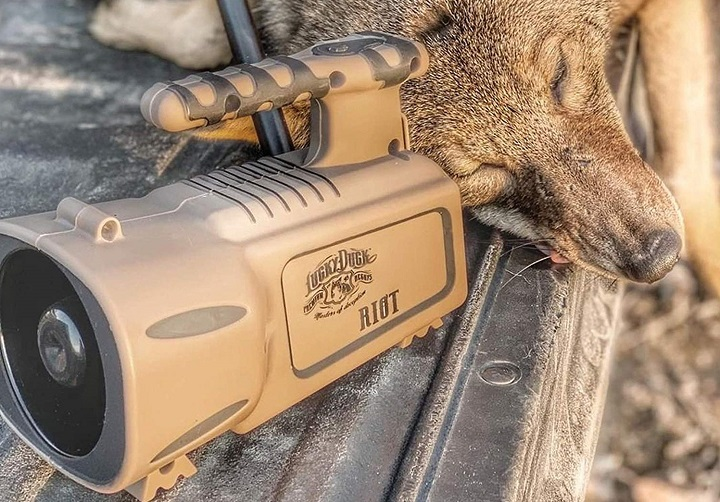 Does More Spending Mean More Quality for Coyote Calls