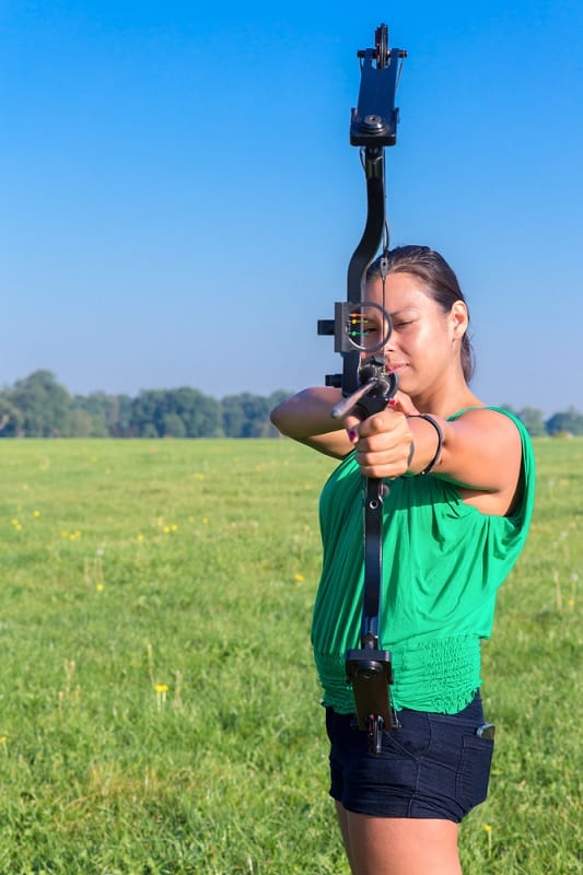 Aiming compound bow