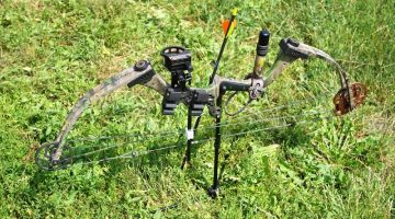 Compound Bow on Grass