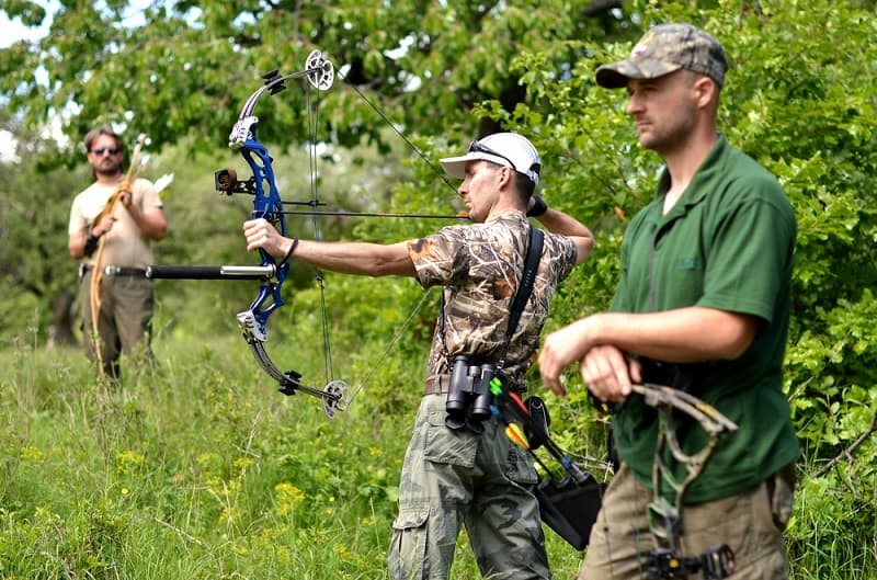 Shooting Compound Bow In Field